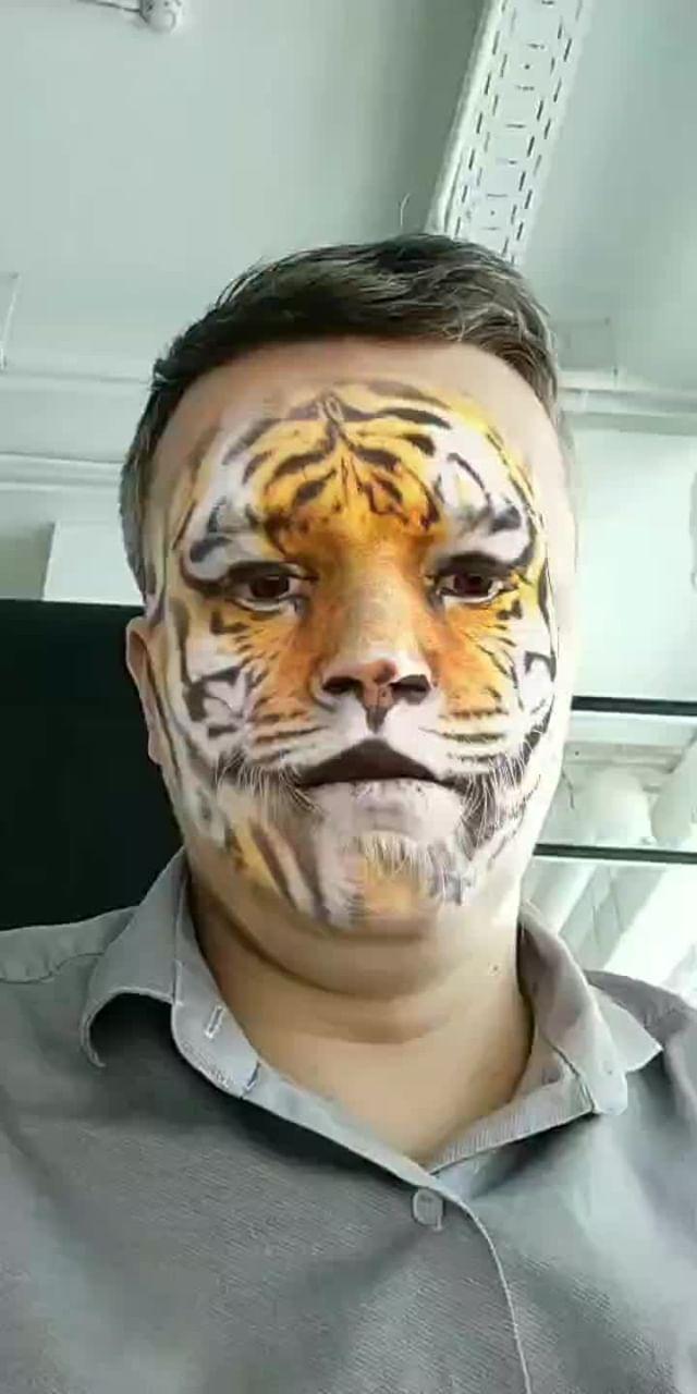 Instagram filter Tiger facepaint