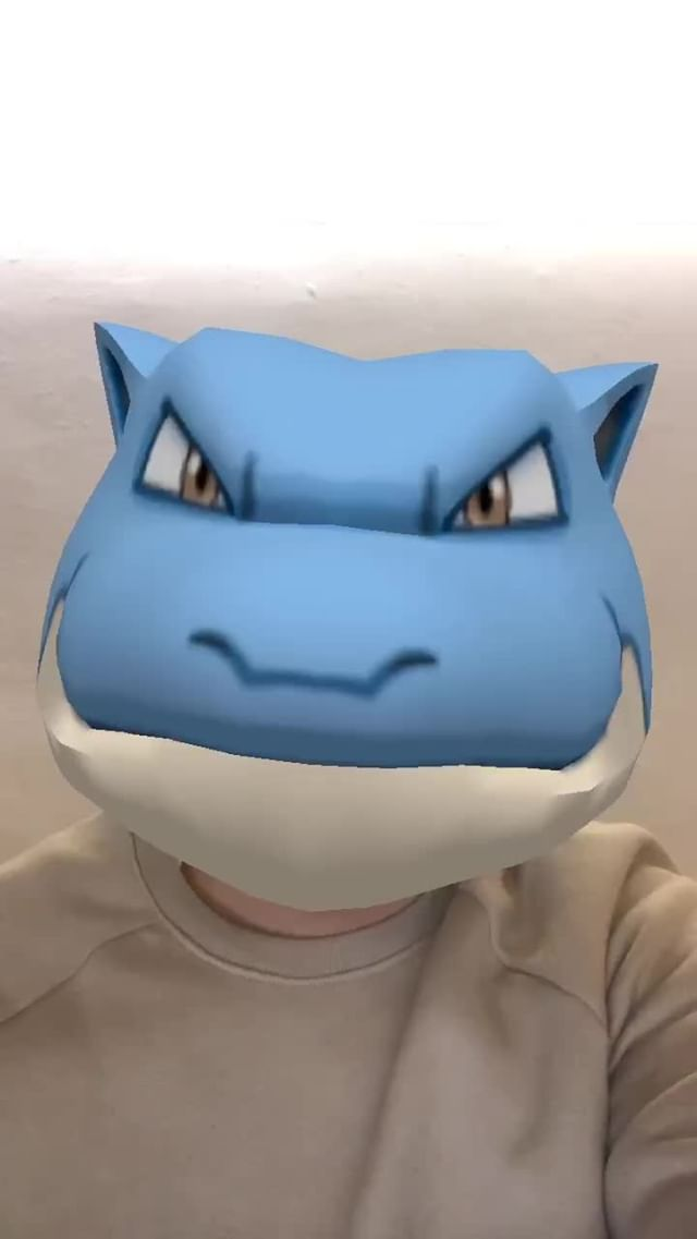 Instagram filter Blastoise Head