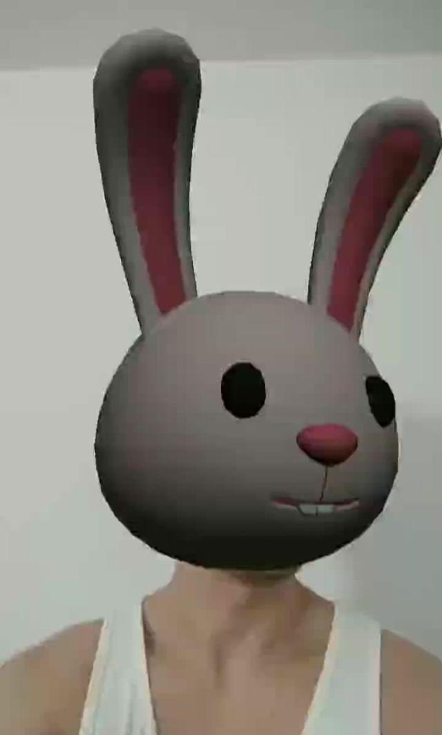 Instagram filter BunnyHead