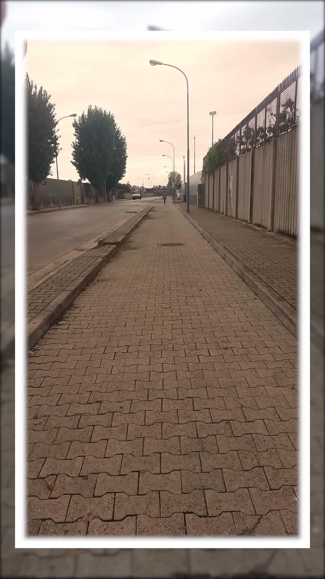 nfs11_ Instagram filter FrameStamp