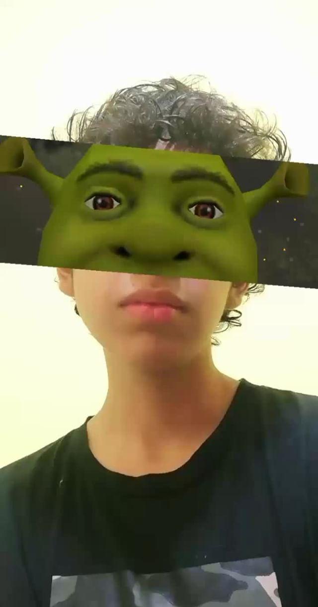 Instagram filter Shrek (ヸまバ)