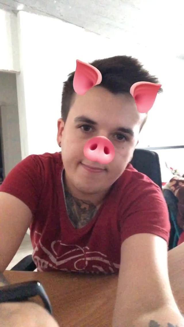 Instagram filter Schweine