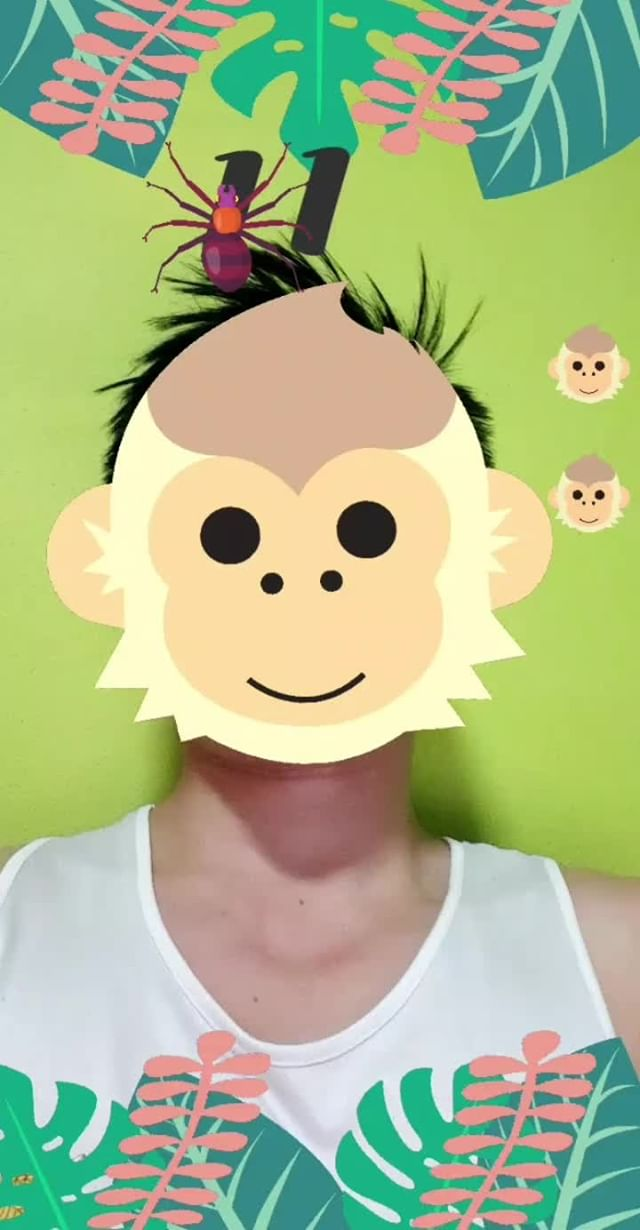 Instagram filter Don't Feed Monkey