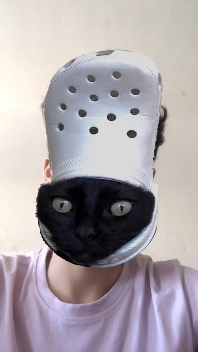 Instagram filter Crocs Cat Switch