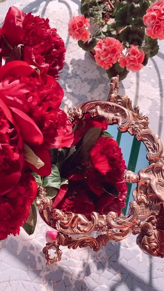 Instagram filter Roses & Kira