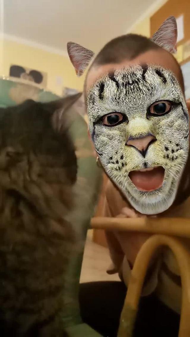 Instagram filter CAT FACE