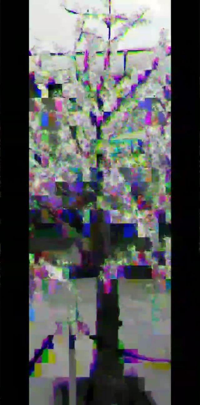 Instagram filter signal0