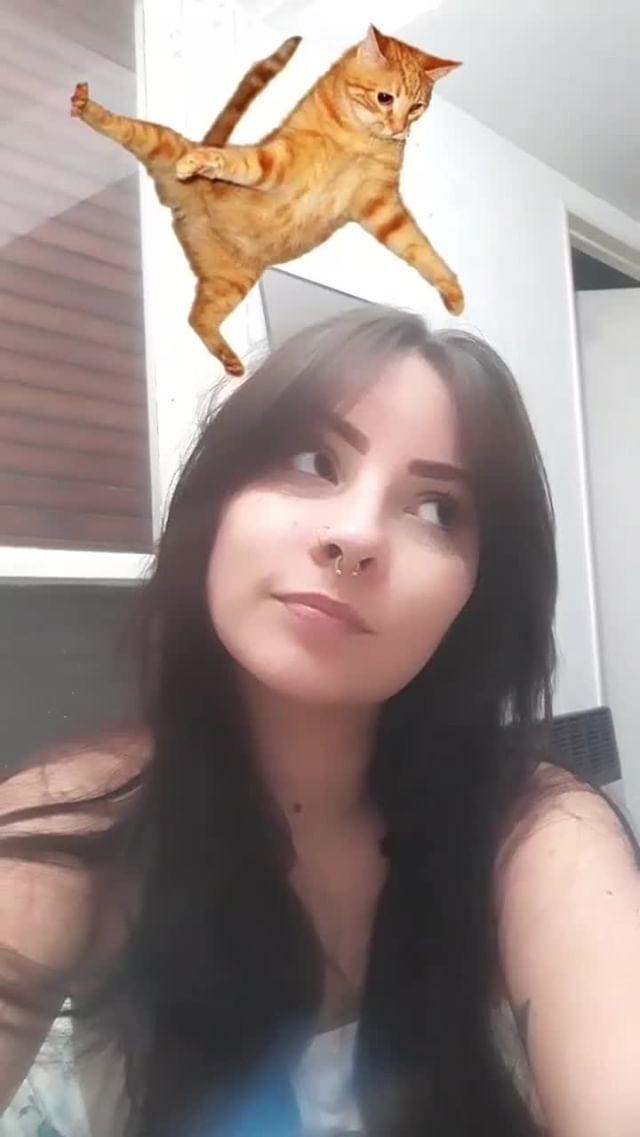 Instagram filter El gato volador