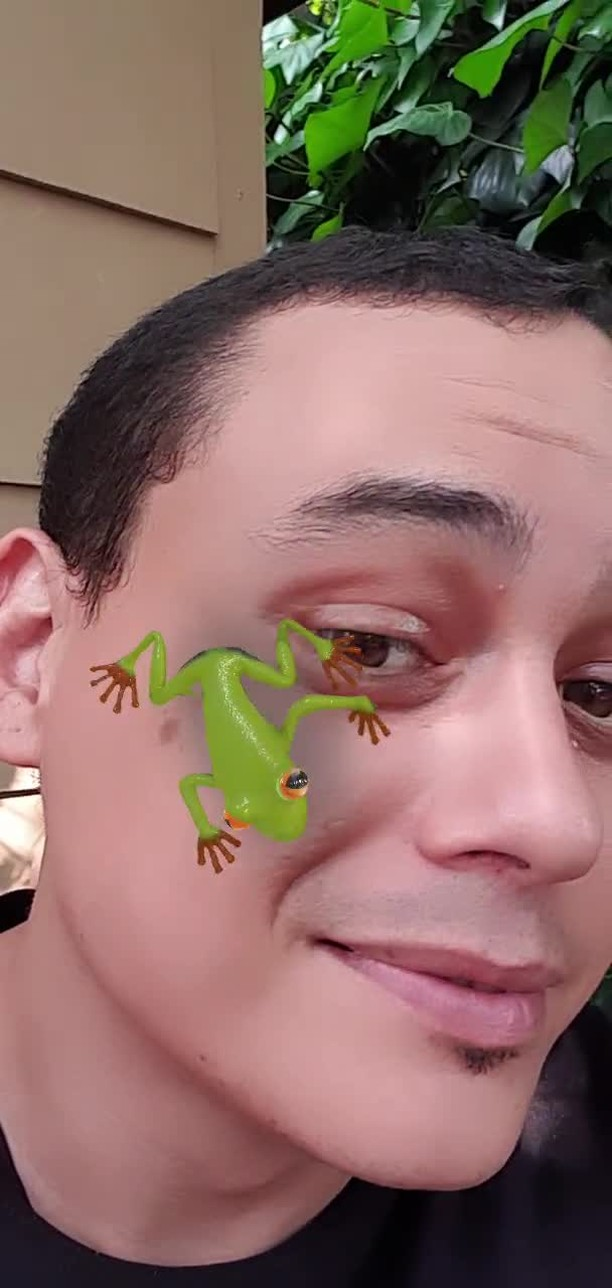 Instagram filter Frogs