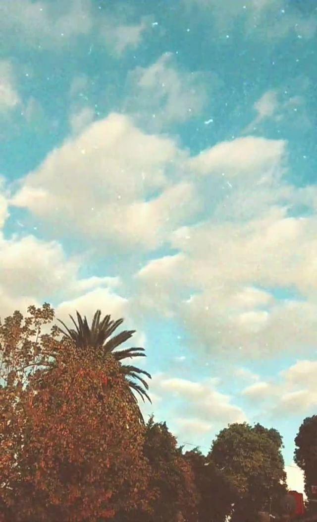 andreantonella Instagram filter 5 vintage tones