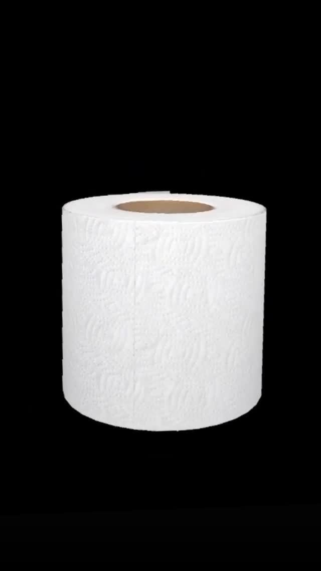 Instagram filter Toilet Paper