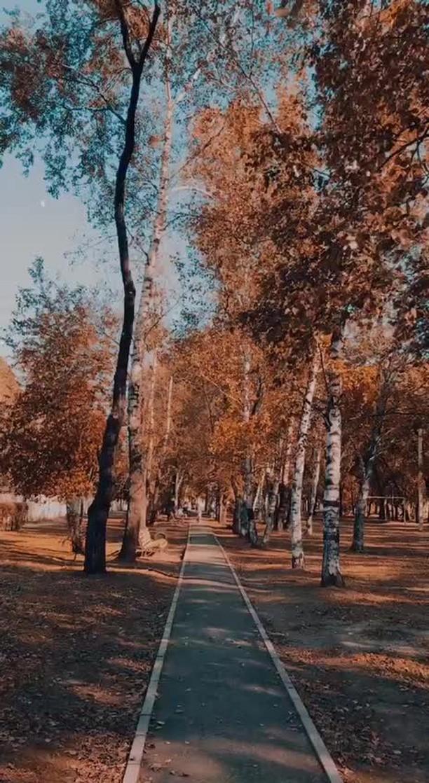 Instagram filter Autumn Presets