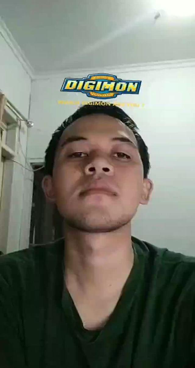 bangsasaiyaa Instagram filter Digimon Are You?