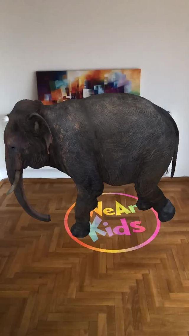 burakartist Instagram filter Elephant