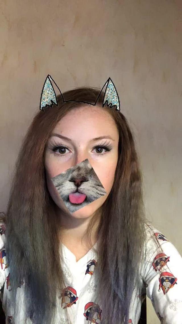 natachaborisovnna Instagram filter cat on the face