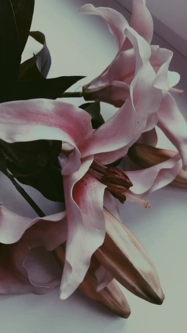 Instagram filter VSCO 01