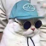 bilgwnn Instagram filters profile picture