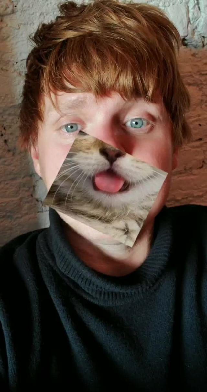 turistastv Instagram filter Cat Mouth