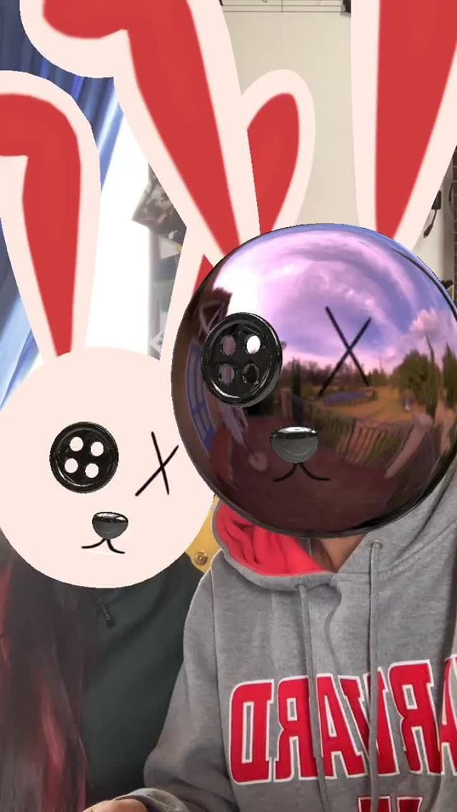 Instagram filter Rabbit puppet