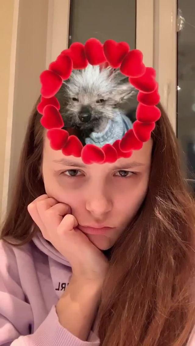 Instagram filter WHAT DOGE