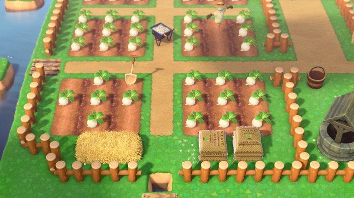 畑周辺のマイデザイン