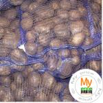 Картофель Украина