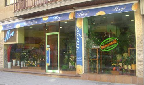 Florist in Salamanca, Calle Bermejeros 12. Salamanca