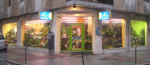 Florist in Salamanca, Calle Valencia, 18. Salamanca
