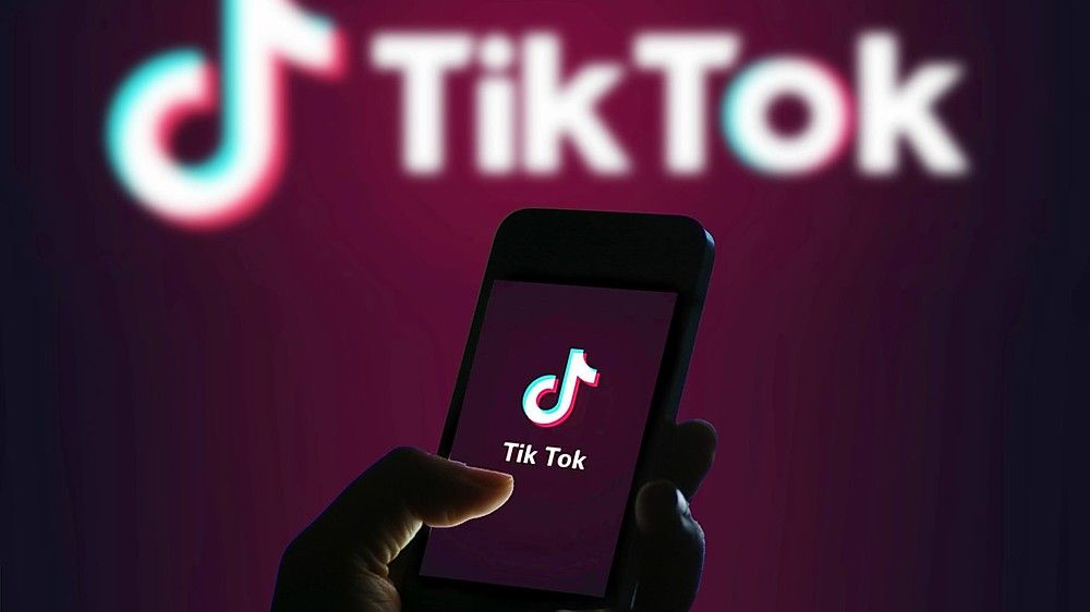 TikTok Traffic News – What Can plenty of TikTok Followers Do For You?