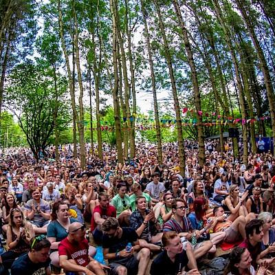 2000 Trees Festival