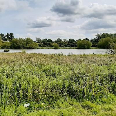 Stoke Floods Nature Reserve