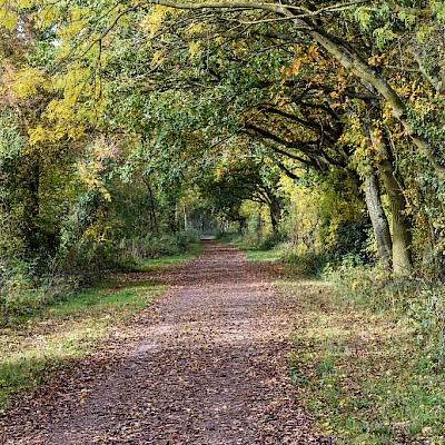 Kenilworth Greenway