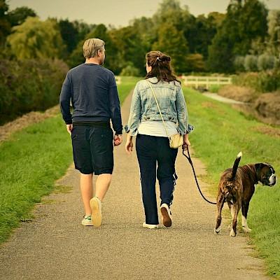 Walks in Willenhall