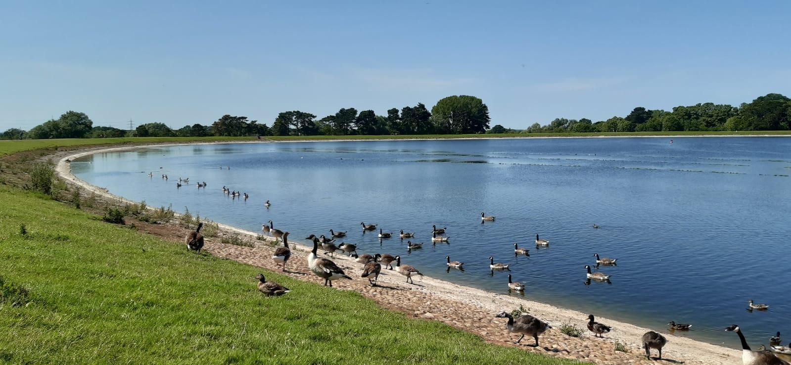 Shustoke Reservoirs