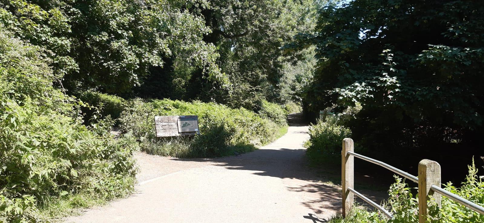 Kenilworth Common