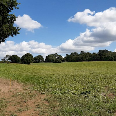 Umberslade Farm Estate Walk
