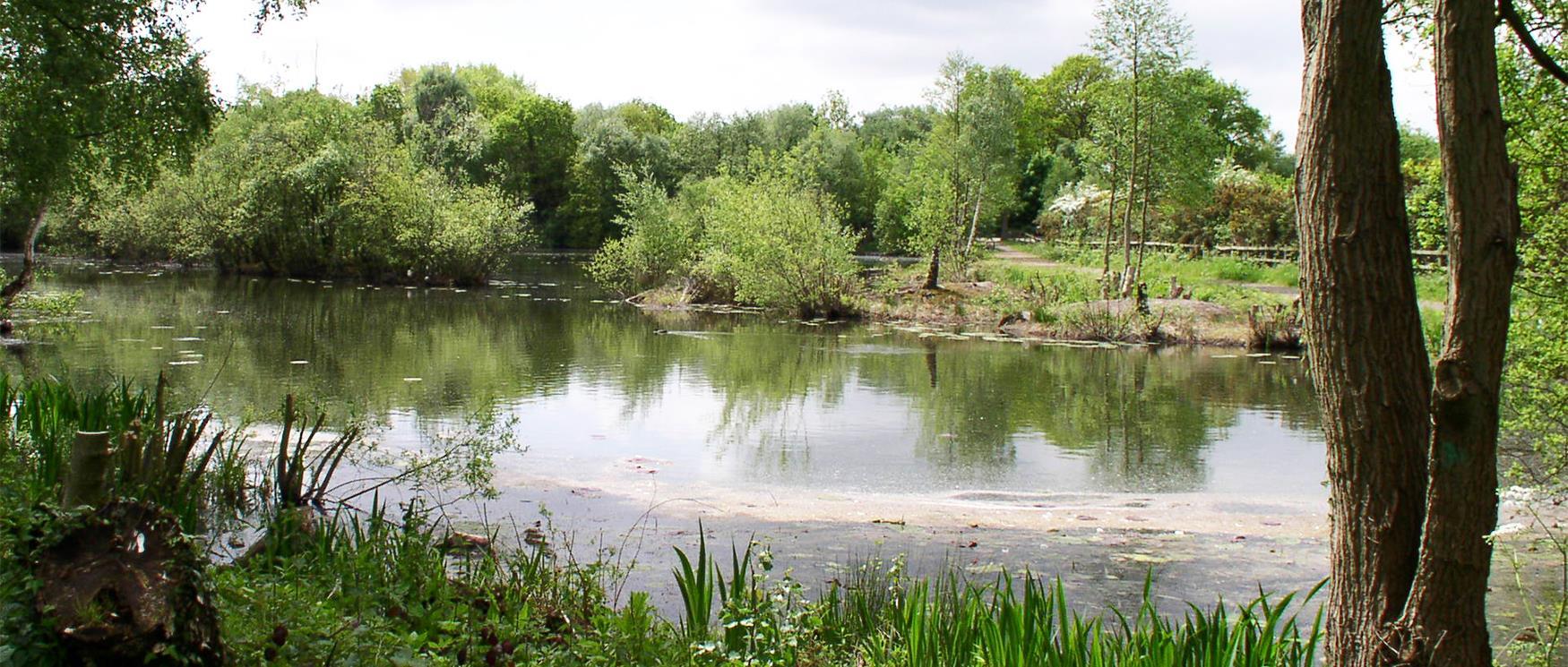 Blackwater Park