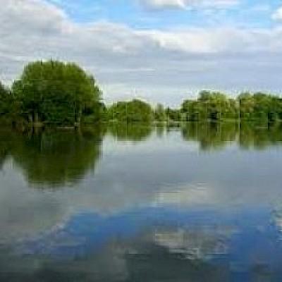 Badshot Lea Pond