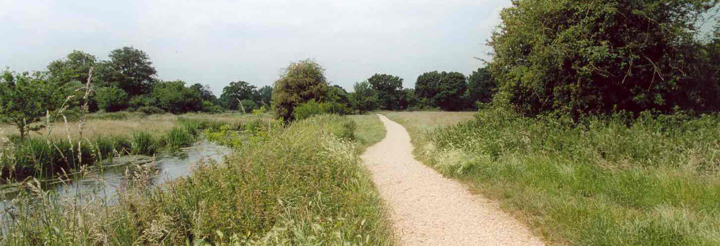 'The Wild Side of Sandhurst' Walk