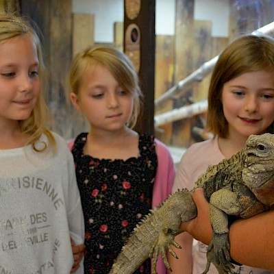 Junior Animal Keeper Experience for 6-10 year olds
