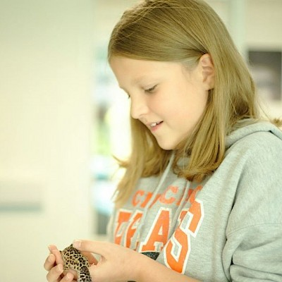 Junior Animal Keeper Experience for 11-14 year olds