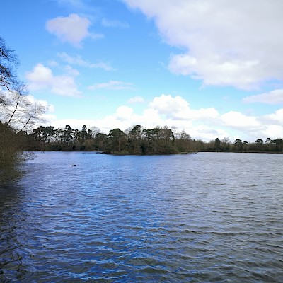 Hartsholme Country Park