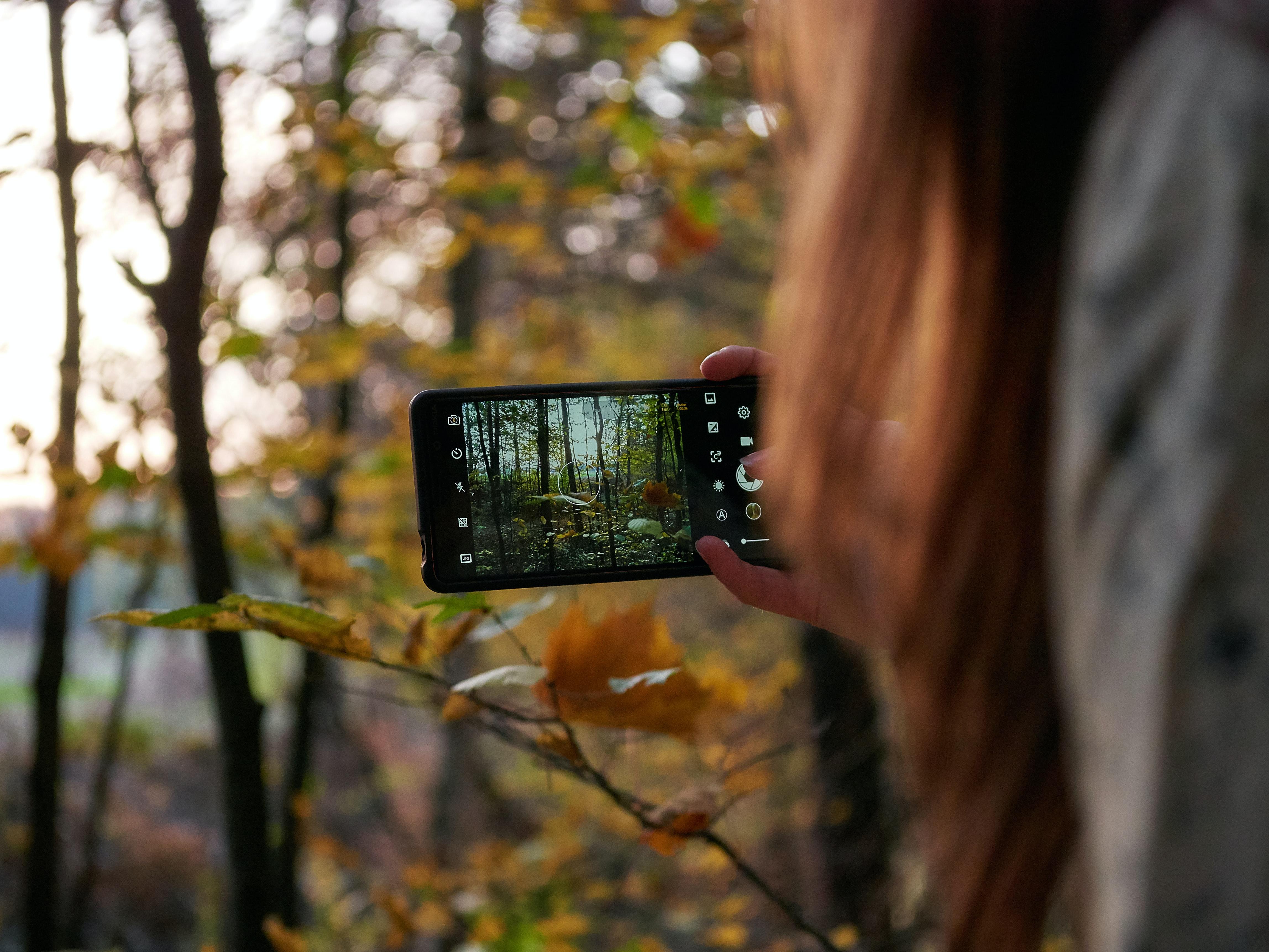 Seek by iNaturalist App