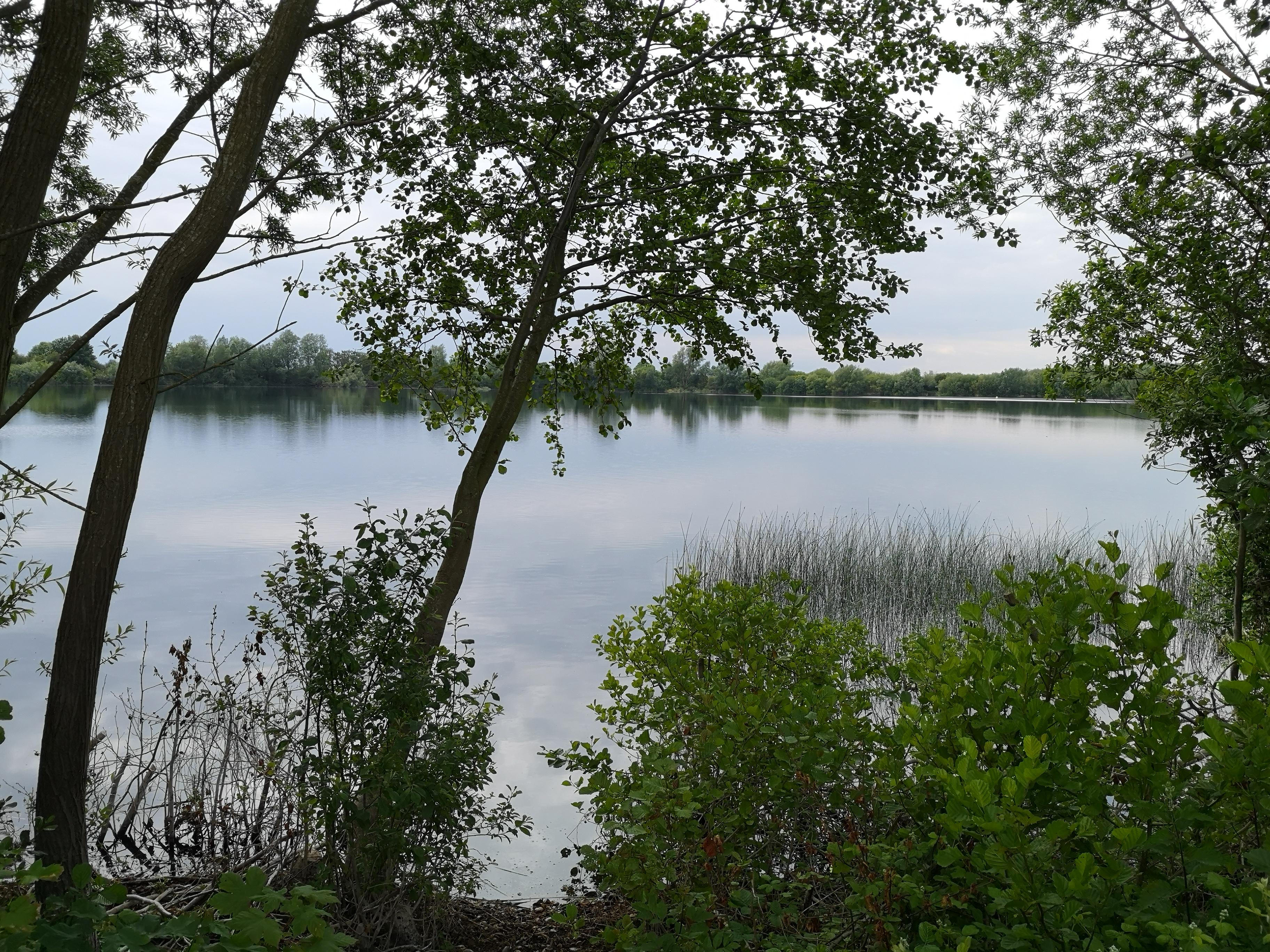Walking around Girton Lakes