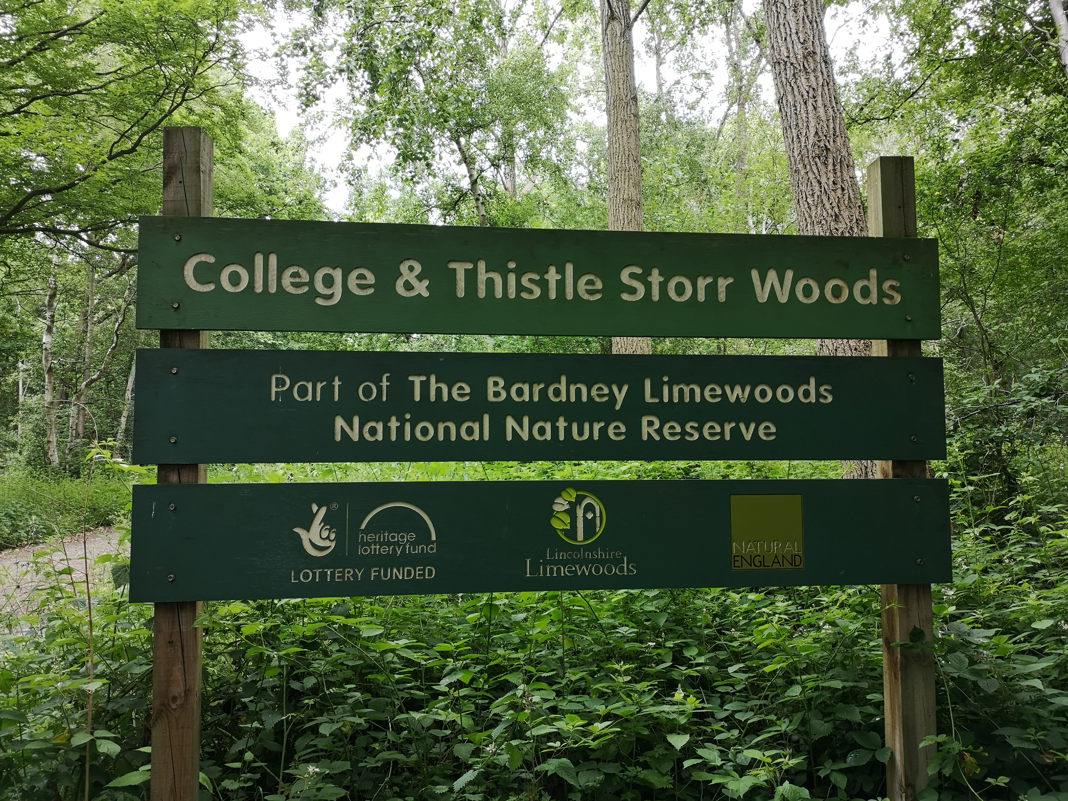 Bardney Limewoods National Nature Reserve- College & Thistle Storr Wood