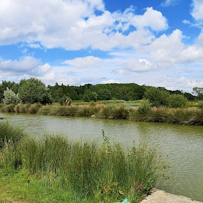 Hanworth Country Park, Lincolnshire