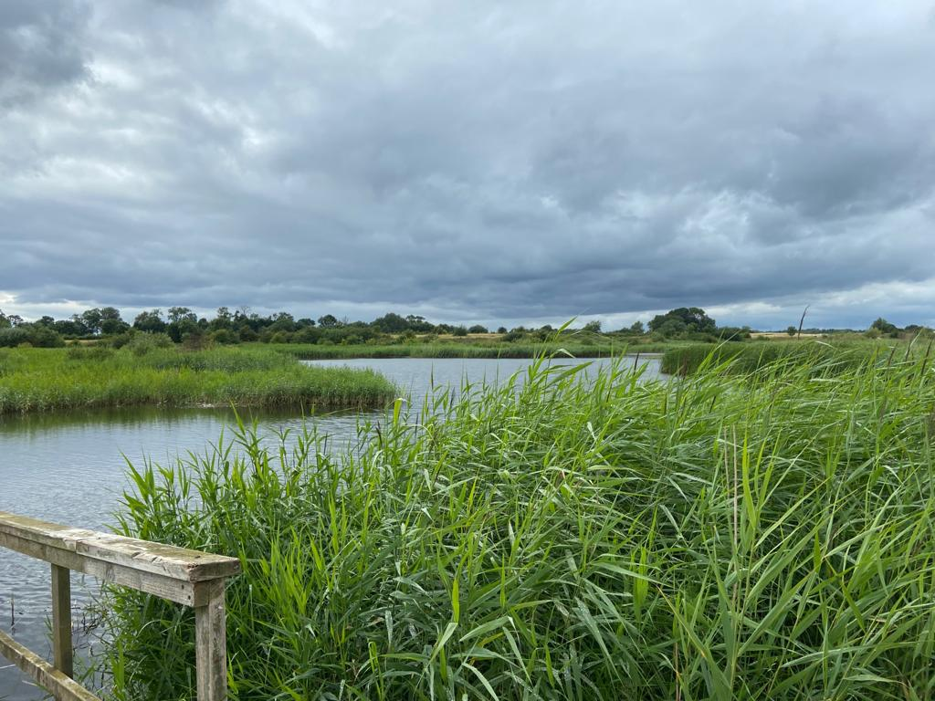 RSPB Langford Lowfields Nature Reserve