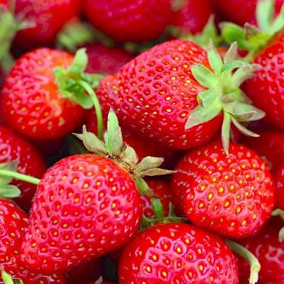 Draycott Strawberry Fayre