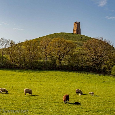 Visit Glastonbury Tor