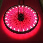 Vasilios Roumeliotis - Fuchsia Light-3